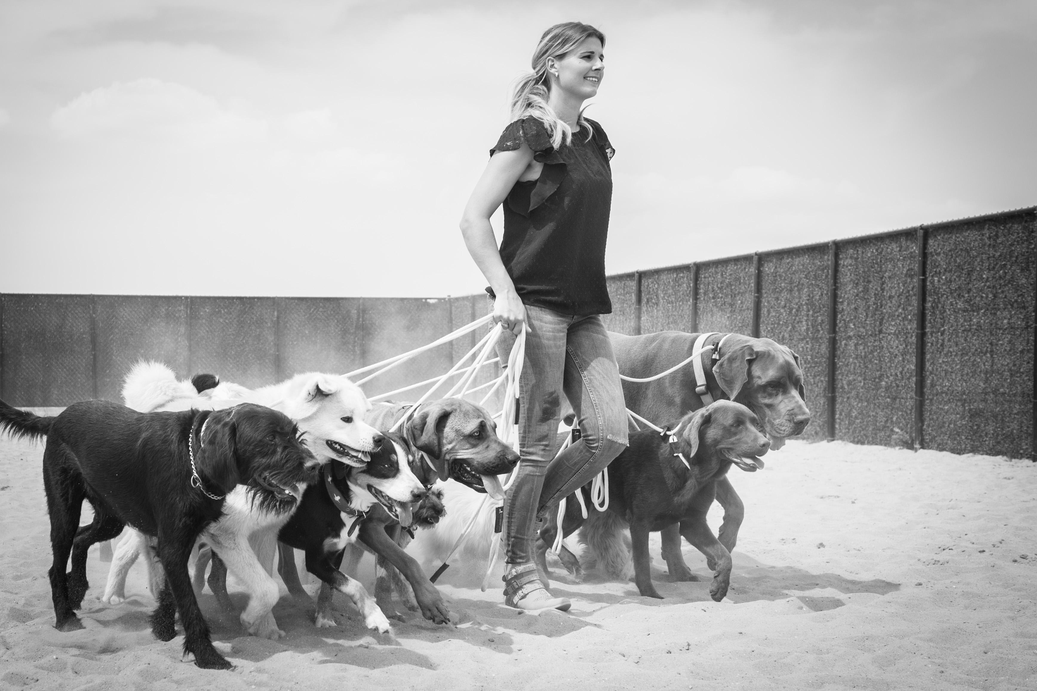 Anniek Winters | Hondengedragsdeskundige|